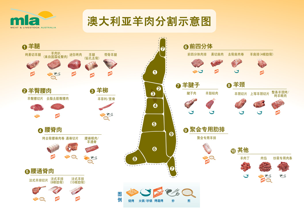 Lamb-Poster-Chinese